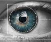 Ögonen avslöjar narkotikapåverkan